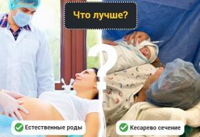 Фото: umkamama.ru